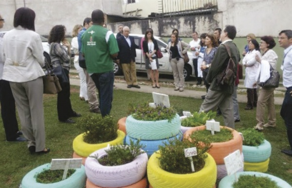 Green and Healthy Environments Program in  Sao Paulo (PAVS)